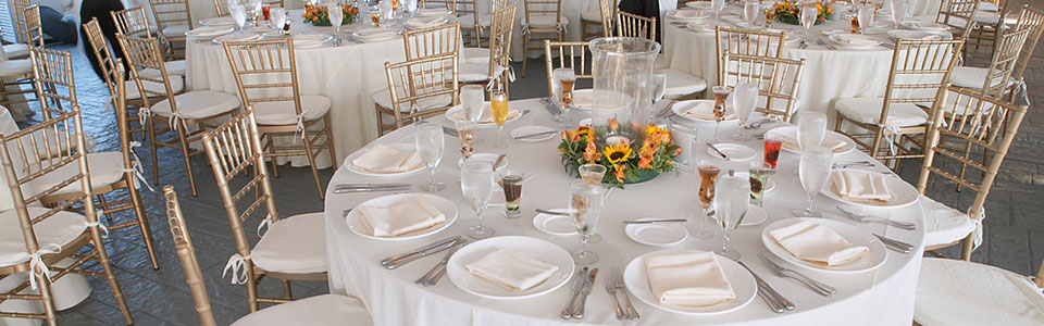 Allied party rentals serving maryland dc baltimore and virginia junglespirit Choice Image