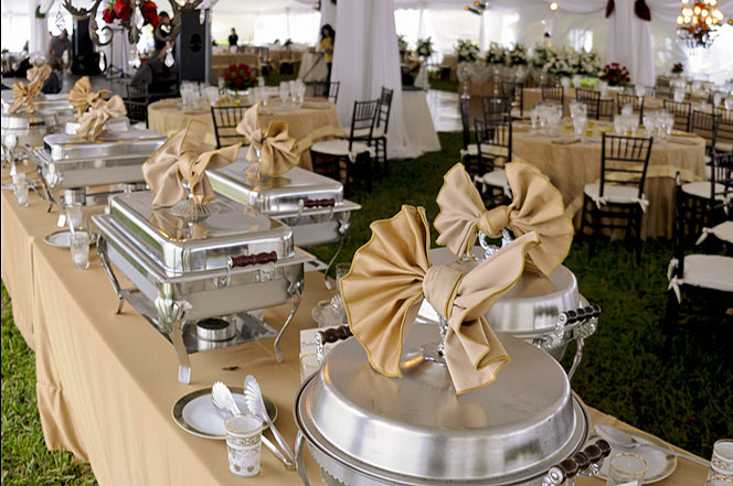 Planning a Party? Here Are Three Types of Event Rentals You May Not Have Planned For (But Should)
