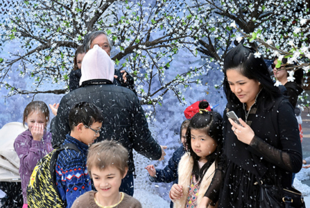 Plan a Memorable Winter Festival in 4 Easy Steps