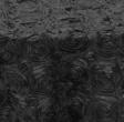 Black Rosette
